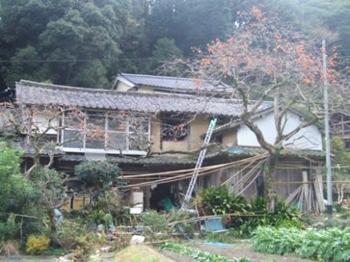f:id:adayasu:20071223081818j:image:left