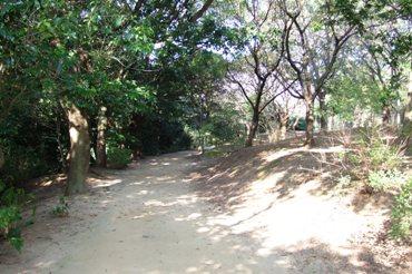 f:id:adayasu:20100919203443j:image:left