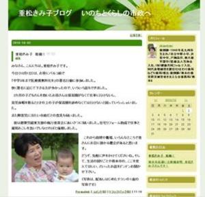 f:id:adayasu:20101002204916j:image:left