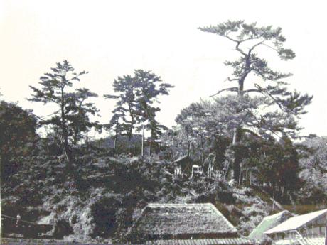 f:id:adayasu:20101021220315j:image:left