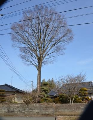 f:id:adayasu:20110123112621j:image:left