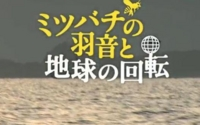 f:id:adayasu:20110526184158j:image:left