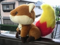 foxkeh02_side