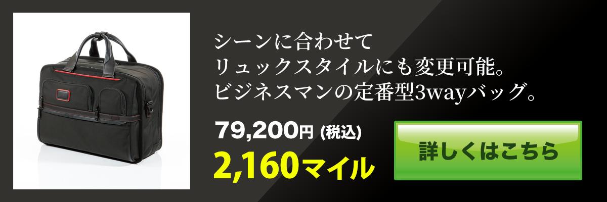 f:id:adventu:20200212091159j:plain