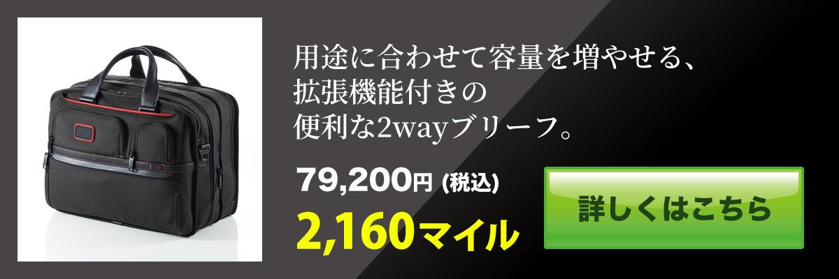 f:id:adventu:20200212091211j:plain