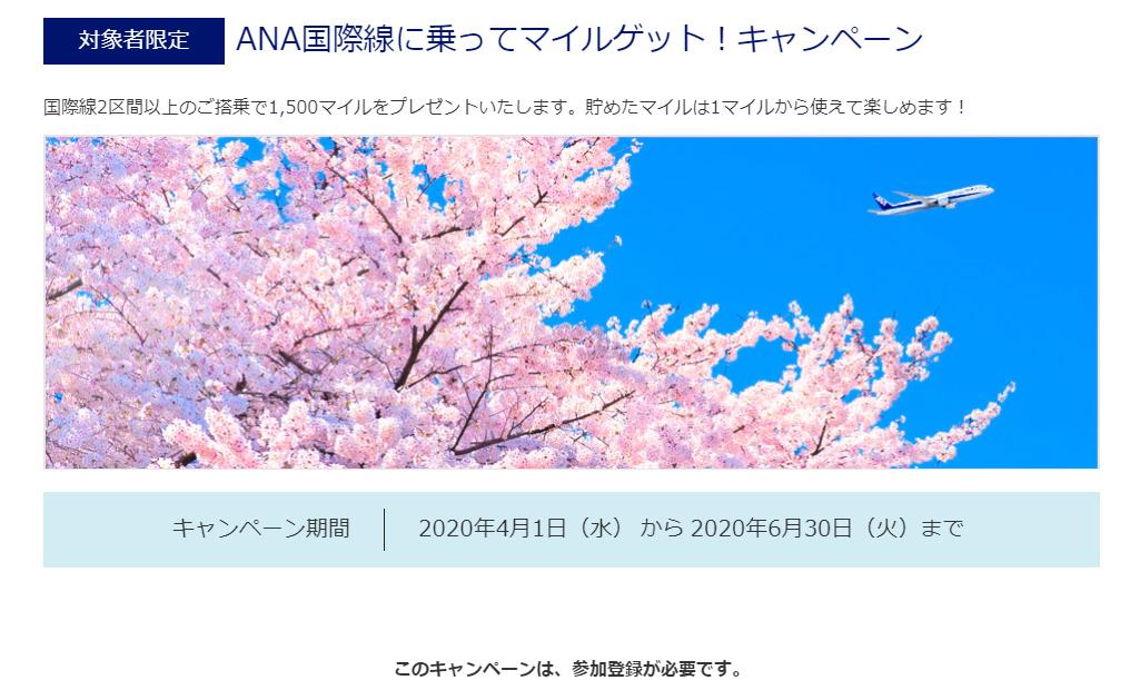 f:id:adventu:20200227163202j:plain