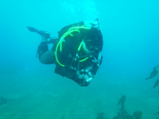 f:id:adventure-diving:20110123133812j:image