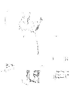 f:id:aerith7:20161220002404p:plain:w200