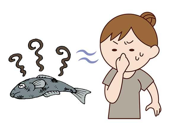 腐った鯖と鼻をつまむ女性