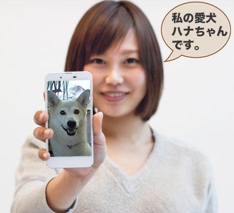 愛犬ハナの写真をスマホに記録している女性