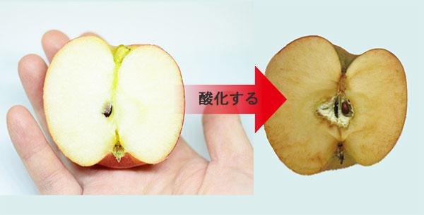 新鮮なりんごと酸化したりんご