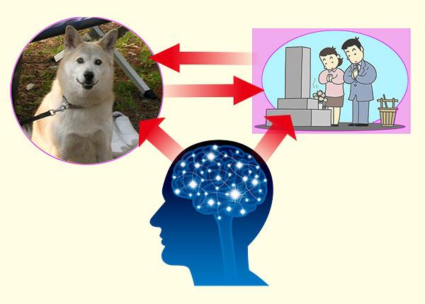 愛犬と墓参りをイメージしている画像