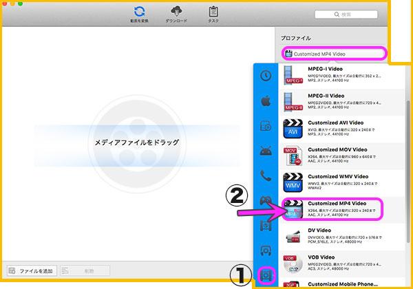 Any Video Converterから変換形式のセレクト画面