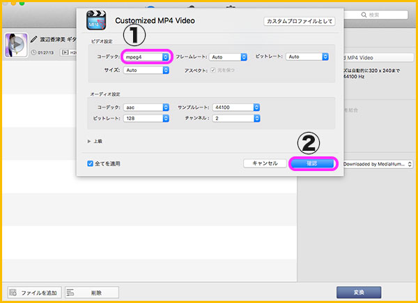 Customized MP4 Videoの設定画面