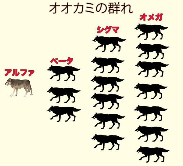 オオカミの群れの位