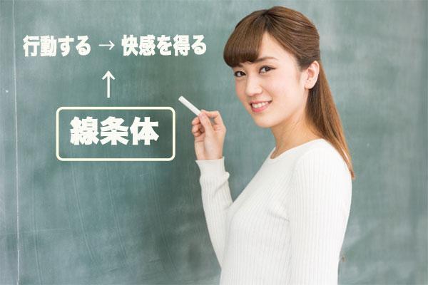 線条体の働きを黒板で説明する女性