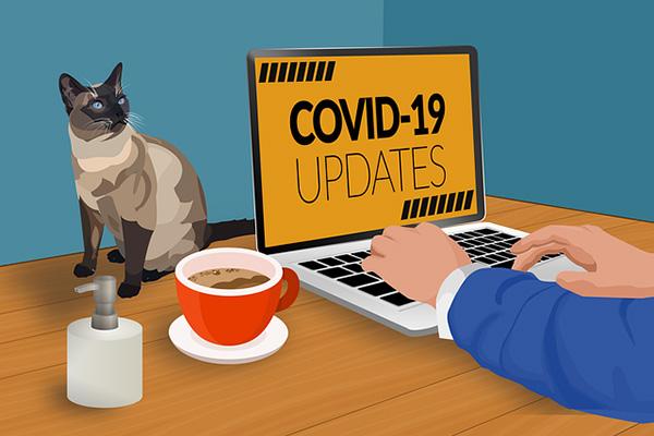 covid-19の情報