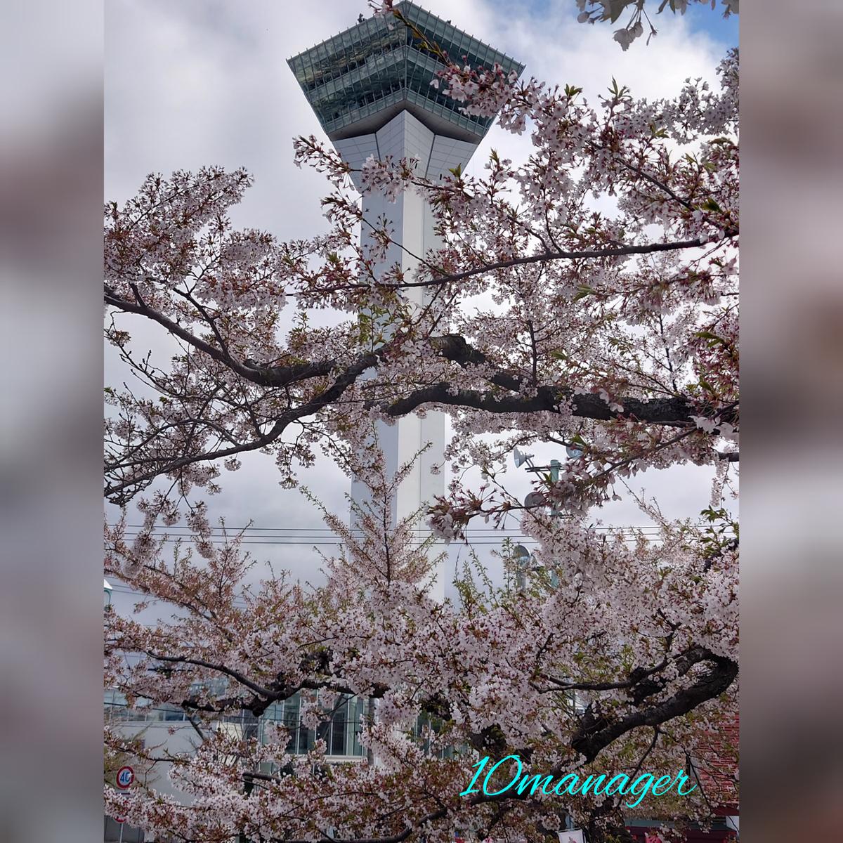 f:id:again-hokkaido-10manager:20210504015614j:plain