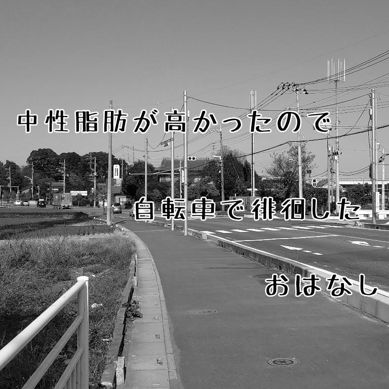 f:id:agemonosan:20191116191248p:plain