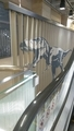 エレベーター横にもこんな演出。反対側からはブラキオサウルスが見え