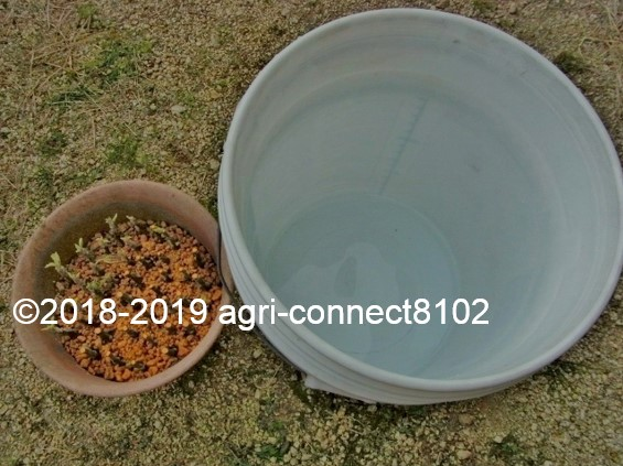 f:id:agri-connect:20190503222217j:plain