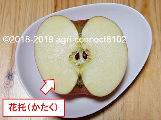 f:id:agri-connect:20190522214953j:plain