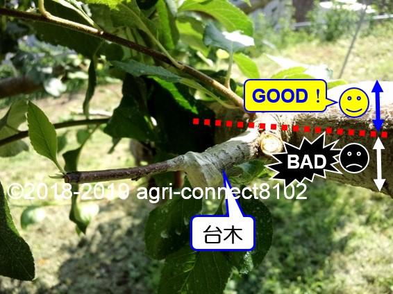 f:id:agri-connect:20190720222358j:plain