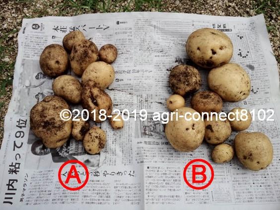 f:id:agri-connect:20190730231310j:plain