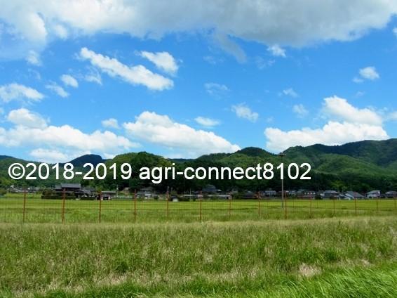f:id:agri-connect:20190816215137j:plain