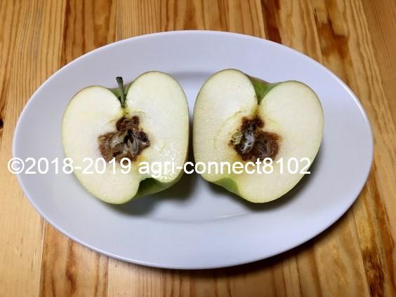 f:id:agri-connect:20190910215912j:plain