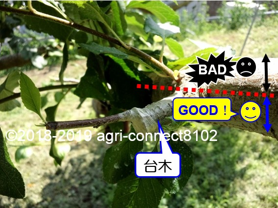 f:id:agri-connect:20191024205831j:plain
