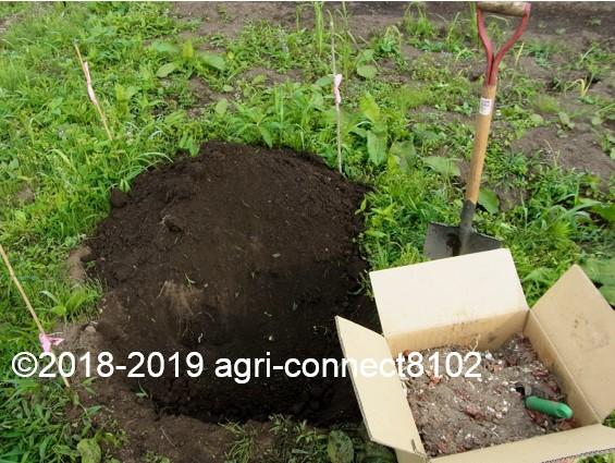f:id:agri-connect:20191112231633j:plain