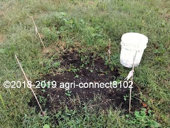 f:id:agri-connect:20191112231904j:plain