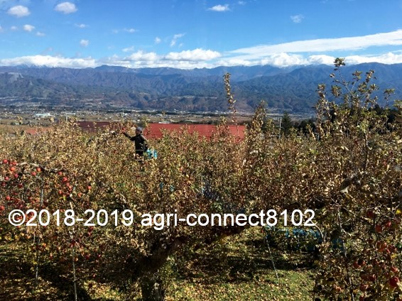 f:id:agri-connect:20191205230252j:plain