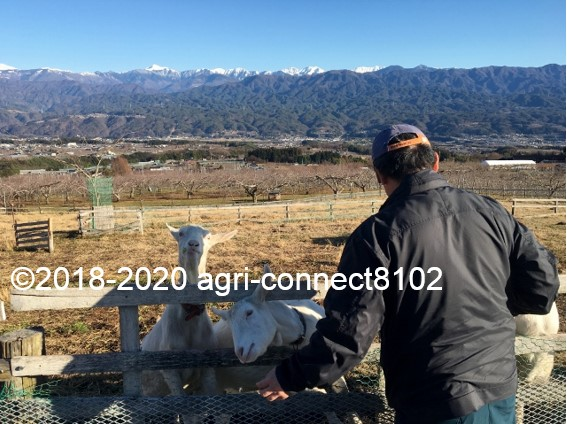 f:id:agri-connect:20200103223604j:plain