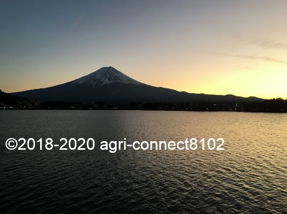 f:id:agri-connect:20200104222030j:plain