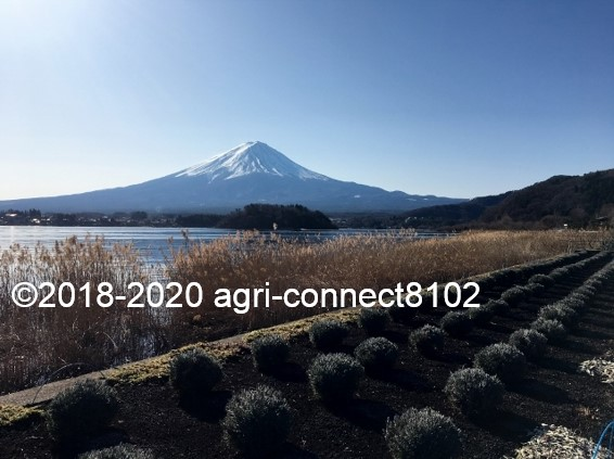 f:id:agri-connect:20200104222509j:plain