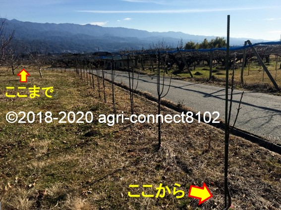 f:id:agri-connect:20200115230210j:plain
