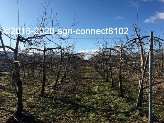 f:id:agri-connect:20200130224937j:plain