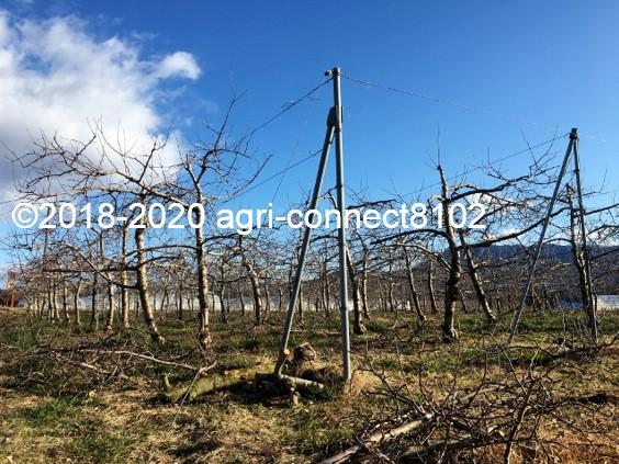 f:id:agri-connect:20200130225527j:plain