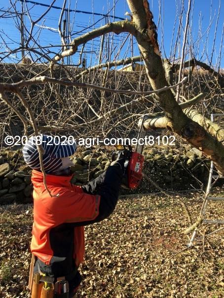 f:id:agri-connect:20200201210611j:plain