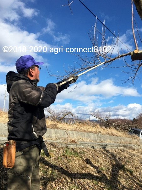 f:id:agri-connect:20200201210619j:plain