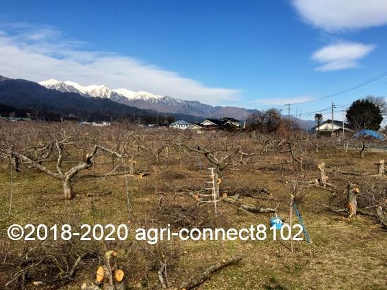 f:id:agri-connect:20200223213821j:plain