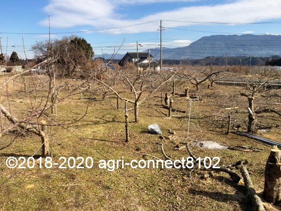 f:id:agri-connect:20200223213834j:plain