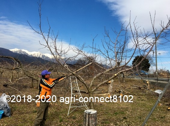 f:id:agri-connect:20200223213844j:plain