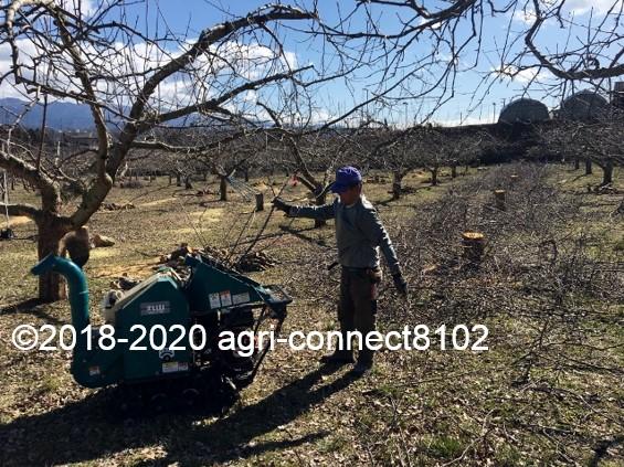 f:id:agri-connect:20200302220033j:plain