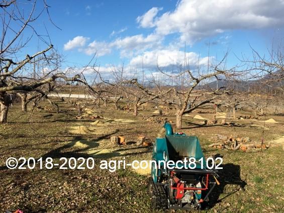 f:id:agri-connect:20200302220055j:plain