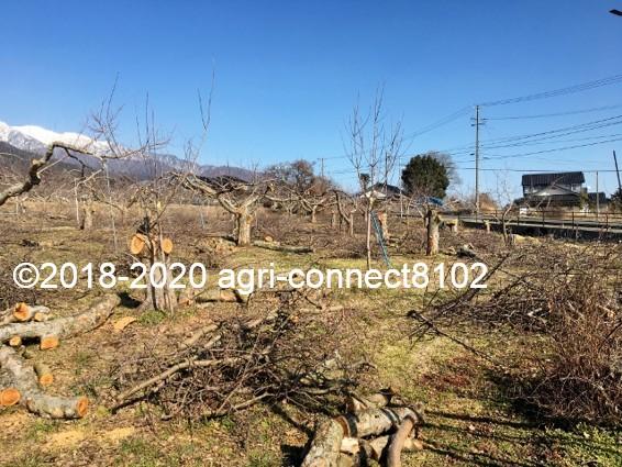 f:id:agri-connect:20200302220537j:plain