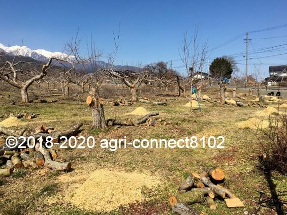 f:id:agri-connect:20200302220746j:plain