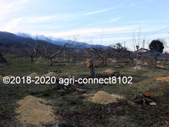 f:id:agri-connect:20200302220801j:plain